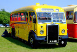 Netley Bus Rally, 8th June 2008.